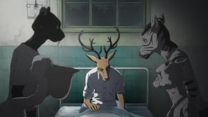 Beastars 1 Episódio 4