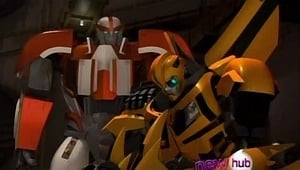 Operation: Bumblebee - Part 1 (