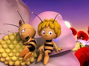 Pszczółka Maja: Sezon 1 Odcinek 13