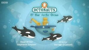 The Octonauts Season 1 Episode 37