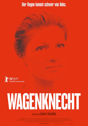 Watch Wagenknecht online