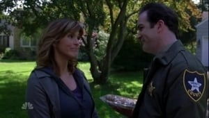 Law & Order: Special Victims Unit Season 8 : Episode 6