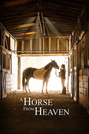 A Horse from Heaven (2018)