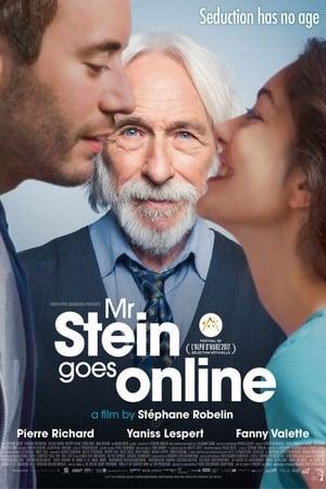 Mr. Stein Goes Online (2017)