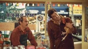 Seinfeld: S08E11