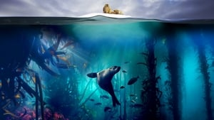 Blue Planet II – Online Subtitrat In Romana