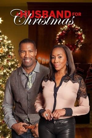 A Husband for Christmas (2016)
