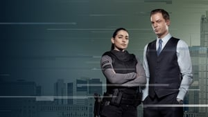 APB – Todas as Temporadas – Legendado