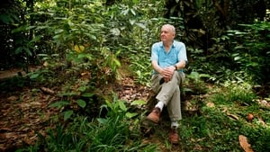 English movie from 2012-2012: Attenborough: 60 Years in the Wild