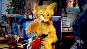 The Fox's Widow Online cda zalukaj lektor pl