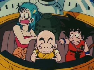 Dragon Ball: 2×20