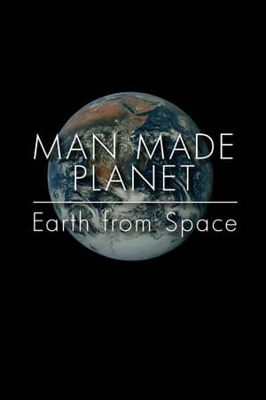Image Man Made Planet: Earth from Space