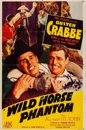 Wild Horse Phantom-Azwaad Movie Database