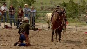 Buck – Der wahre Pferdeflüsterer (2011)