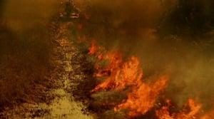 Online CSI: Miami Temporada 2 Episodio 14 ver episodio online Combustión lenta