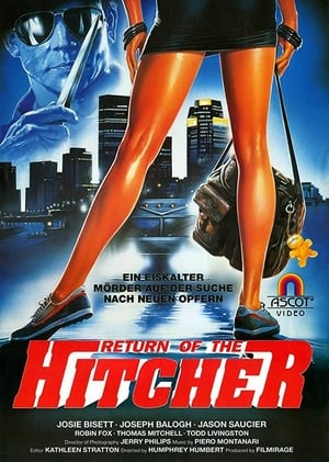 Poster Hitcher in the Dark (1989)