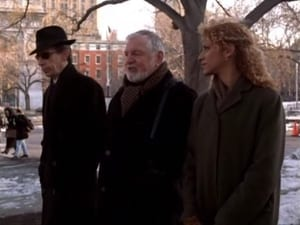Law & Order: Special Victims Unit Season 1 :Episode 17  Misleader