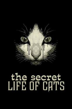 Image The Secret Life of Cats
