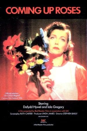 Rhosyn a Rhith (1986)