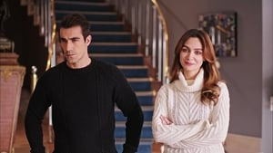 Turkish series from 2017-2018: Price Of Passion