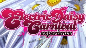 Electric Daisy Carnival Experience (2011)