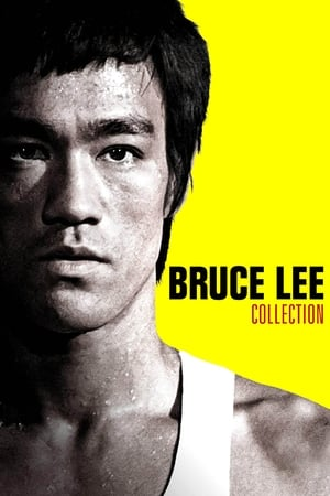 Bruce Lee image 4