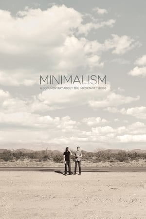 Minimalism: A Documentary About the Important Things (2015)
