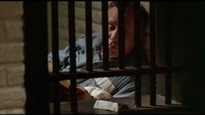 Killer: A Journal of Murder (1996)