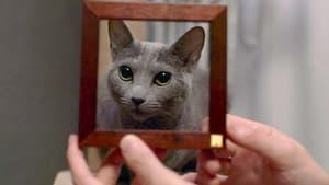 Cat People Season 1 Episode 3