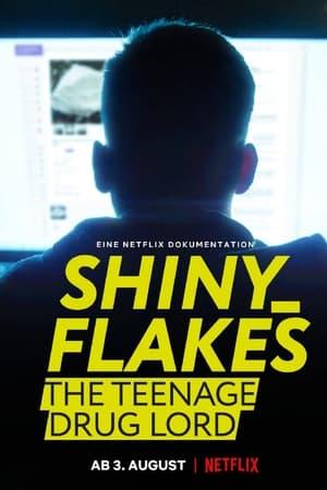 VER Shiny Flakes: El cibernarco adolescente () Online Gratis HD