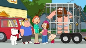 Family Guy Season 11 : Bigfat