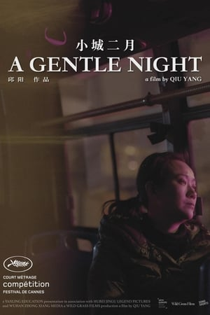 A Gentle Night (2018)