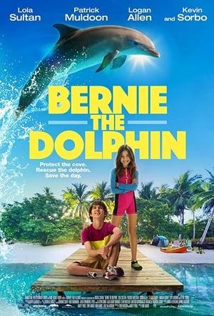 Bernie the Dolphin