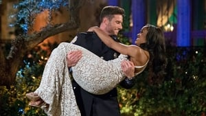 The Bachelorette: 13×1