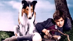 The best movies with Roddy McDowall