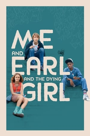 Me And Earl And The Dying Girl (2015) is one of the best movies like The Place Beyond The Pines (2012)