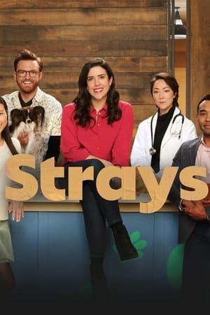 Strays – Season 1