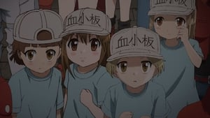 Cells at work Saison 1 Episode 12