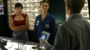 Bones - The Bone That Blew episodio 11 online