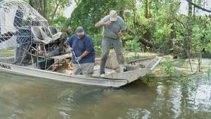Swamp People Season 9 Episode 11