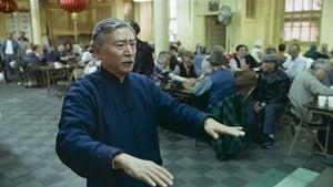 Schiebende Hände (1991)