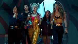 Captura de Aves de presa (Birds of Prey)