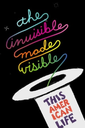This American Life Live: The Invisible Made Visible-Tig Notaro