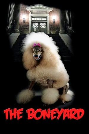 Poster The Boneyard (1991)