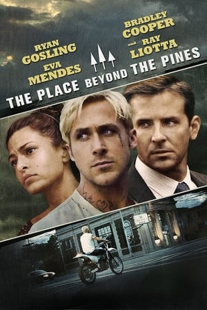 The Place Beyond The Pines (2012) is one of the best movies like Winter's Bone (2010)