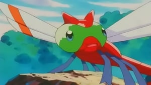 Pokémon Season 4 :Episode 20  Wings 'N' Things