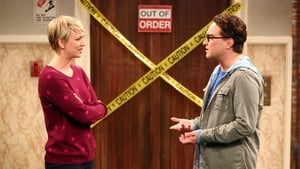 The Big Bang Theory 8×7