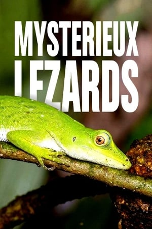 Laws of the Lizard (2017)