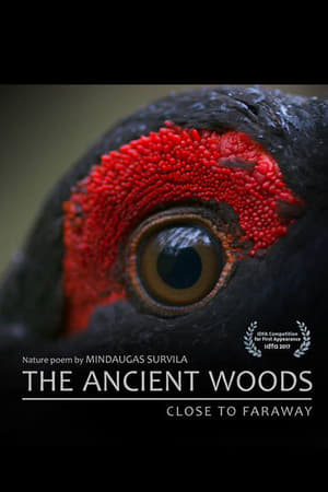 The Ancient Woods (2017)