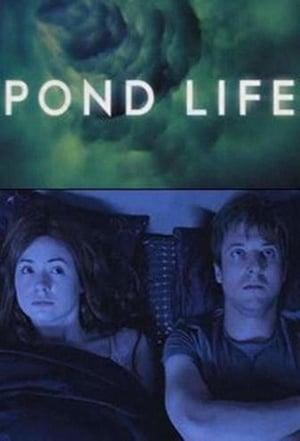 Image Pond Life